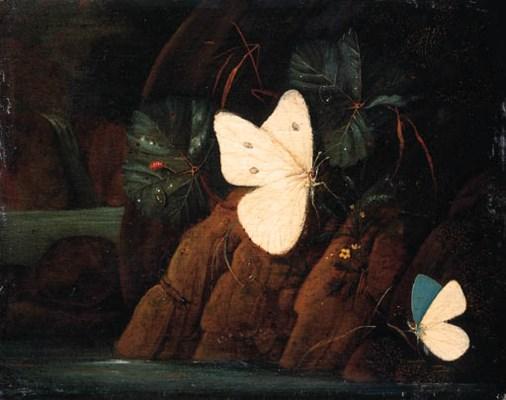 Karl Wilhelm de Hamilton (1668