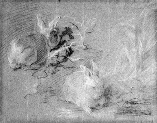 FRANZ WERNER VON TAMM (1658-17