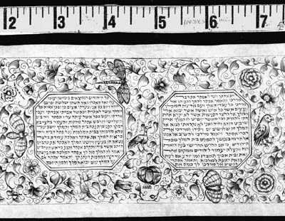 HEBREW MANUSCRIPT. Esther Scro