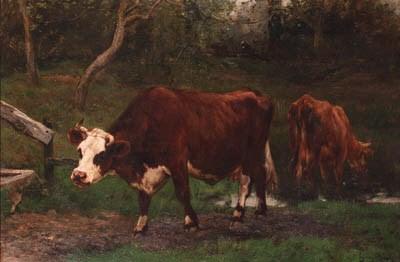 Emile van Marcke de Lummen (18