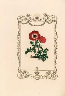BENJAMIN MAUND (1790-1864, edi