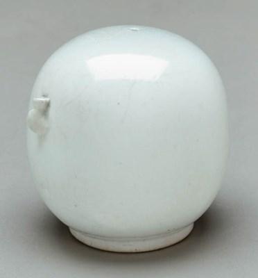 A White Porcelain Water Droppe