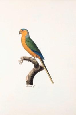 Jacques BARRABAND (1767/8-1809