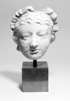 A Gandharan plaster head