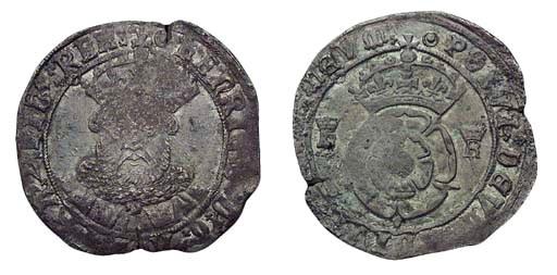 Henry VIII, Testoon, 7.02g., t