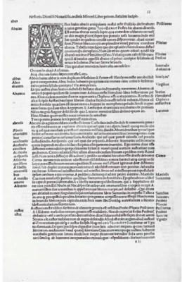 NESTOR, Dionysius. Vocabulariu