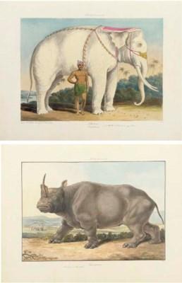 SMITH, Charles Hamilton (1776-