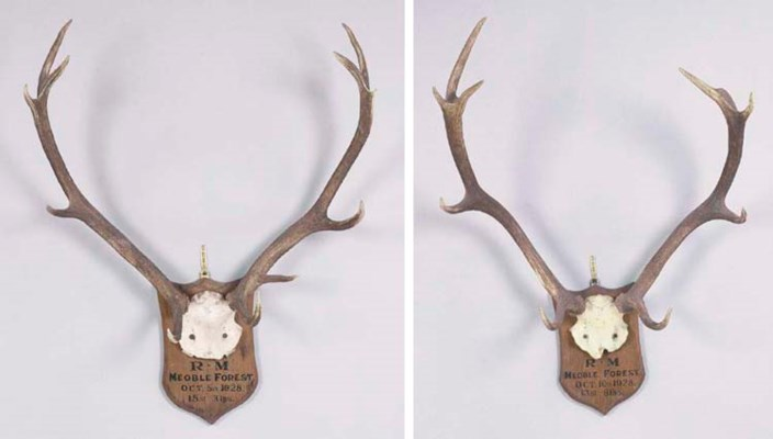 TWO SETS OF ANTLERS