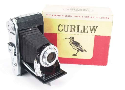Curlew III no. 3/7894