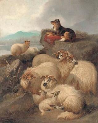 J. C. Morris (fl.1851-1863)