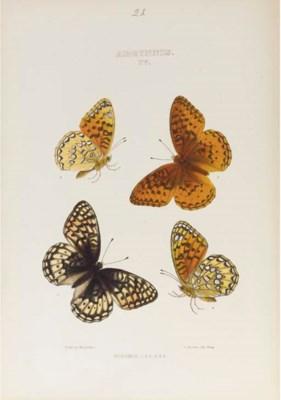 EDWARDS, William Henry (1822-1