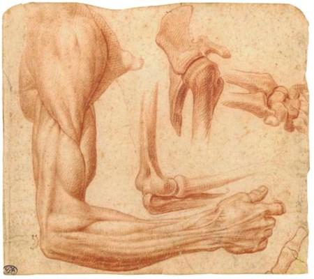 Francesco dei'Rossi, il Salvia
