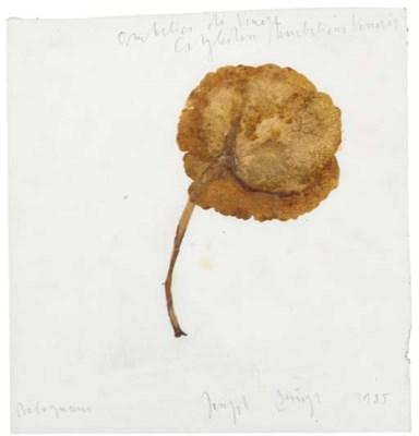 Joseph Beuys (1921-1986)