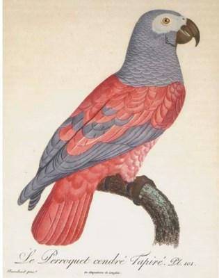After Jacques Barraband (1767-