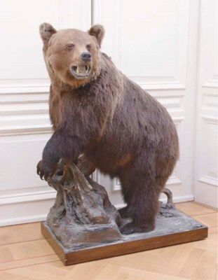 A STUFFED BROWN BEAR