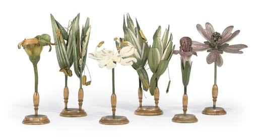 Six German didactic botanical