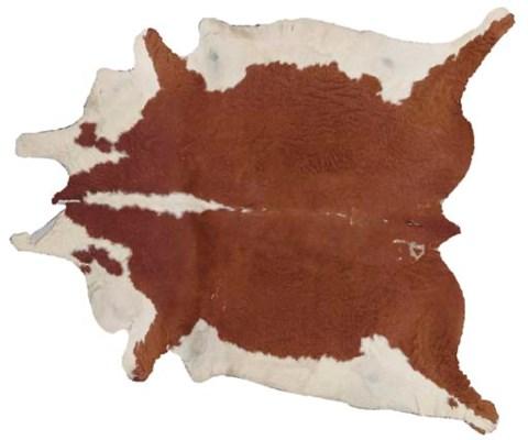 A BROWN AND WHITE PONY SKIN RU
