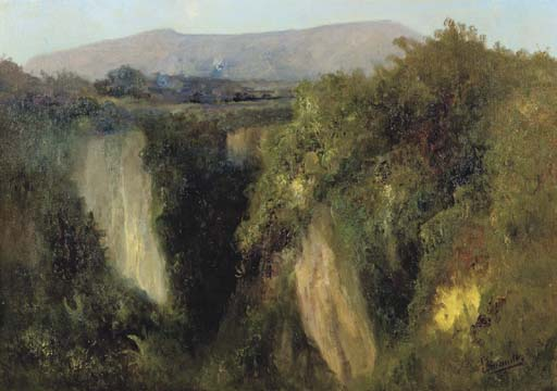An Indonesian landscape with waterfall