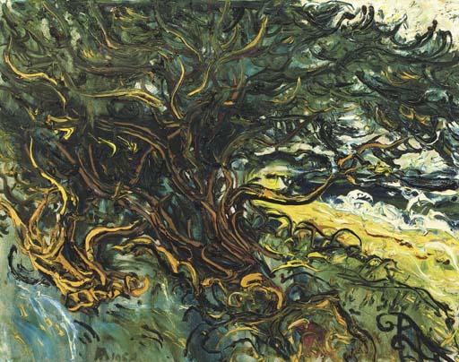Bohon Beringin - Banyan tree