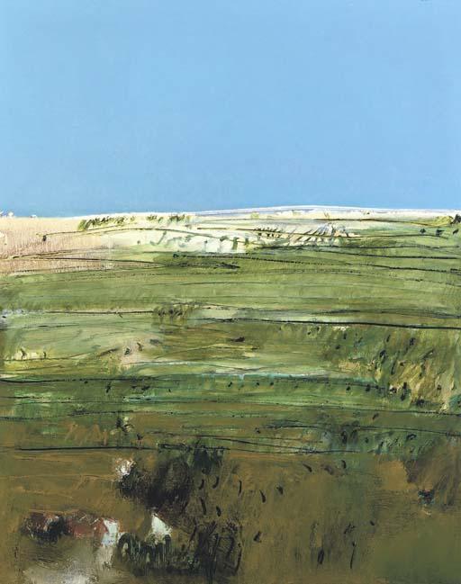 Dessa landscape