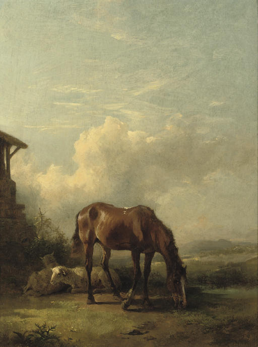 Sheep and a horse on a sunny afternoon