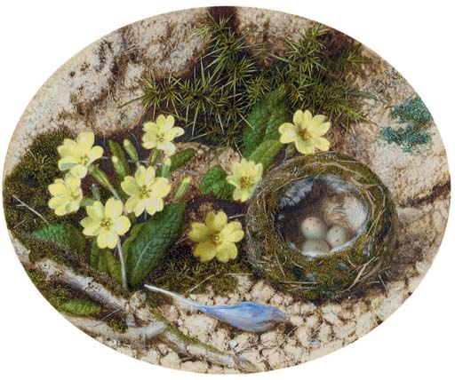 Primroses, a crocus and a bird's nest, on a mossy bank