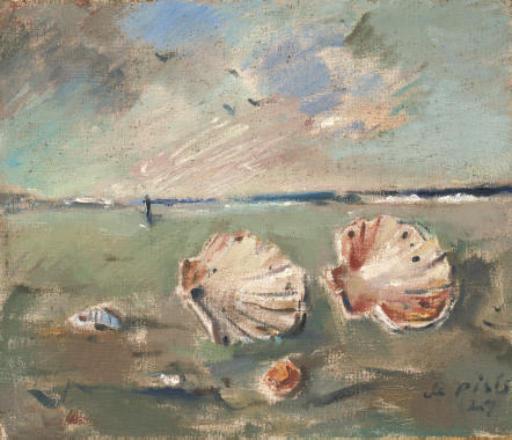 Natura morta marina con conchiglie