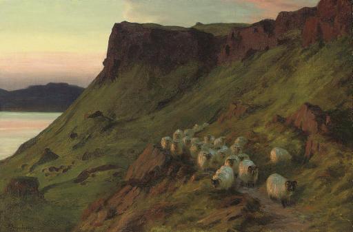 Sheep below the Greeben Cliff, Mull, Evening