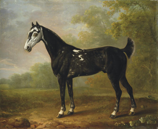 Nimrod aged seven, in a wooded landscape