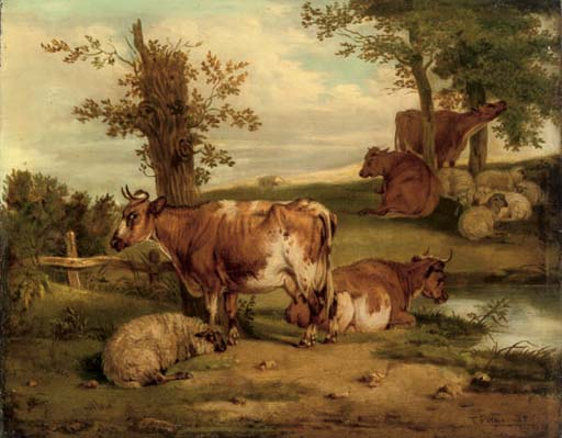 Cattle and sheep resting
