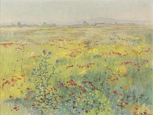 A poppy field before a Greek village