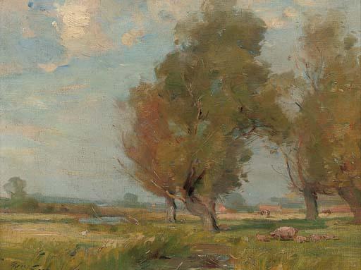 Meadow near Thrapston, Northants