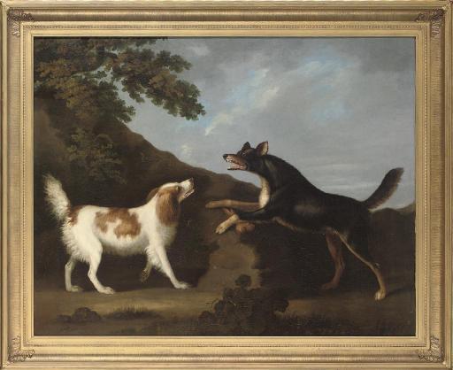 A dispute over a bone