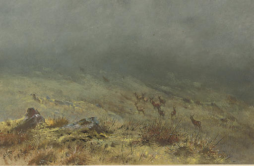 Going away in the mist