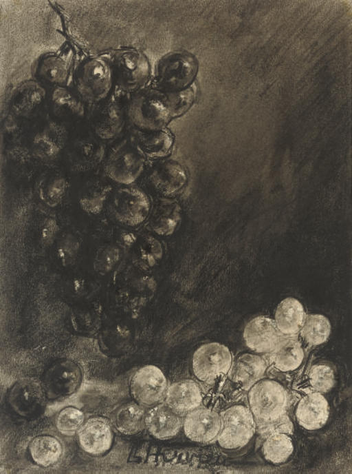 Study of grapes