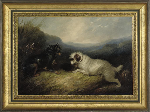 Terriers at a rabbit hole