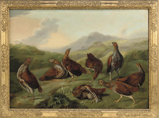 A covey of partridges in a landscape