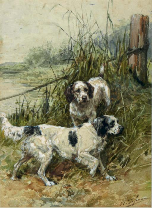Hunting dogs on the watch