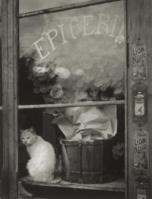 Le Chat Blanc de l'Epicerie, c. 1938