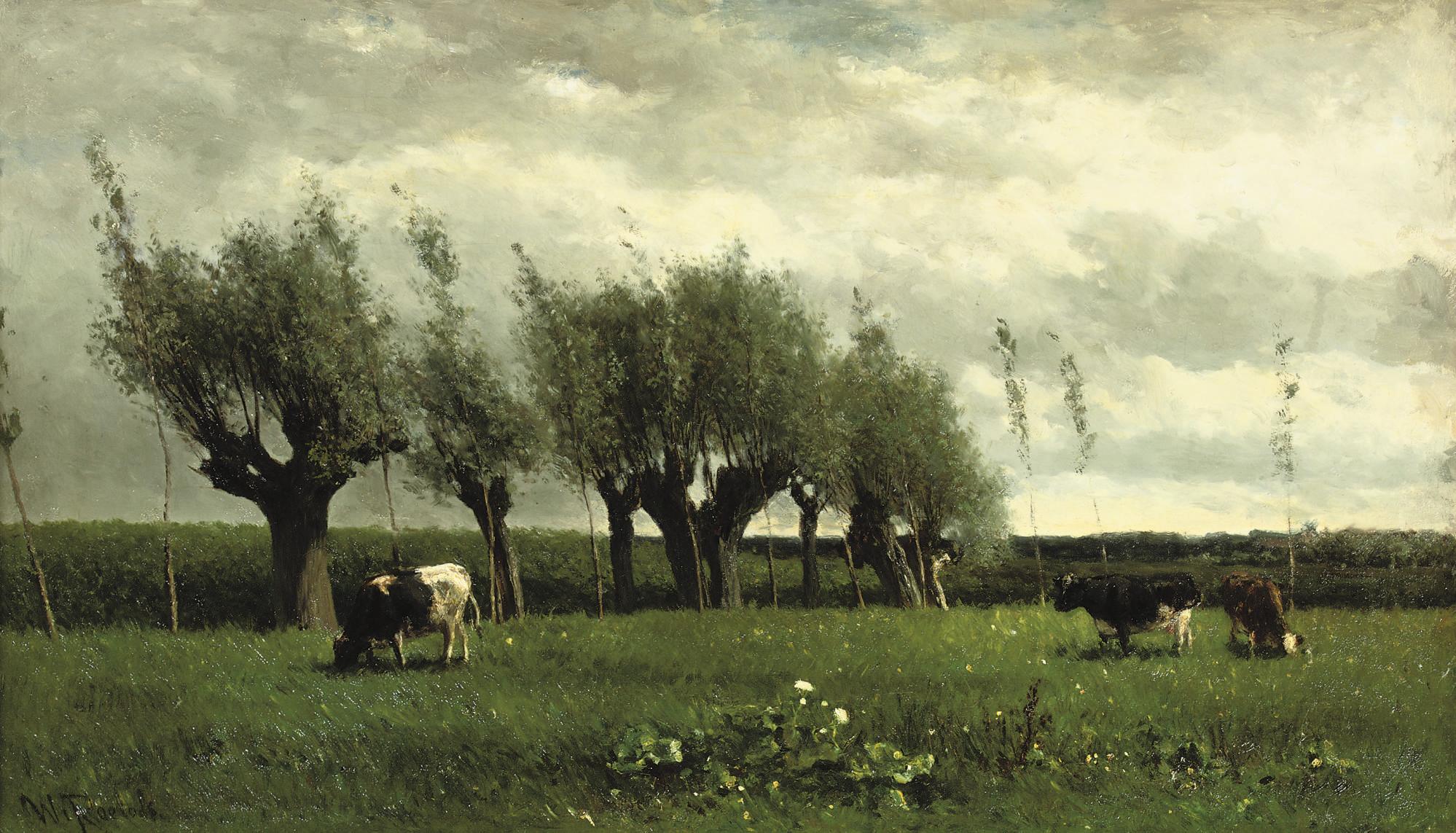 Wilgenrij: cattle grazing near willows