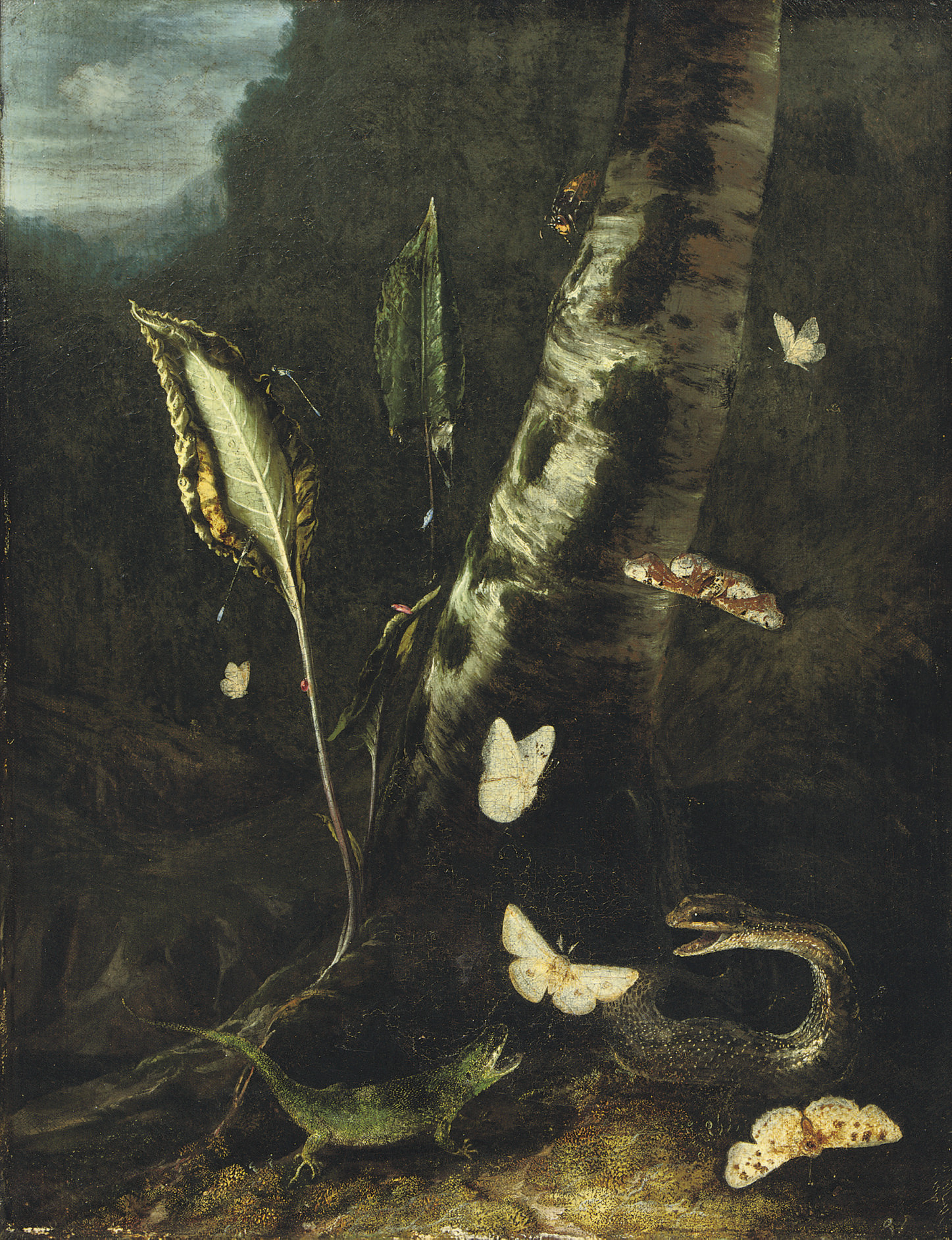 A forest floor with a lizard, a snake and butterflies