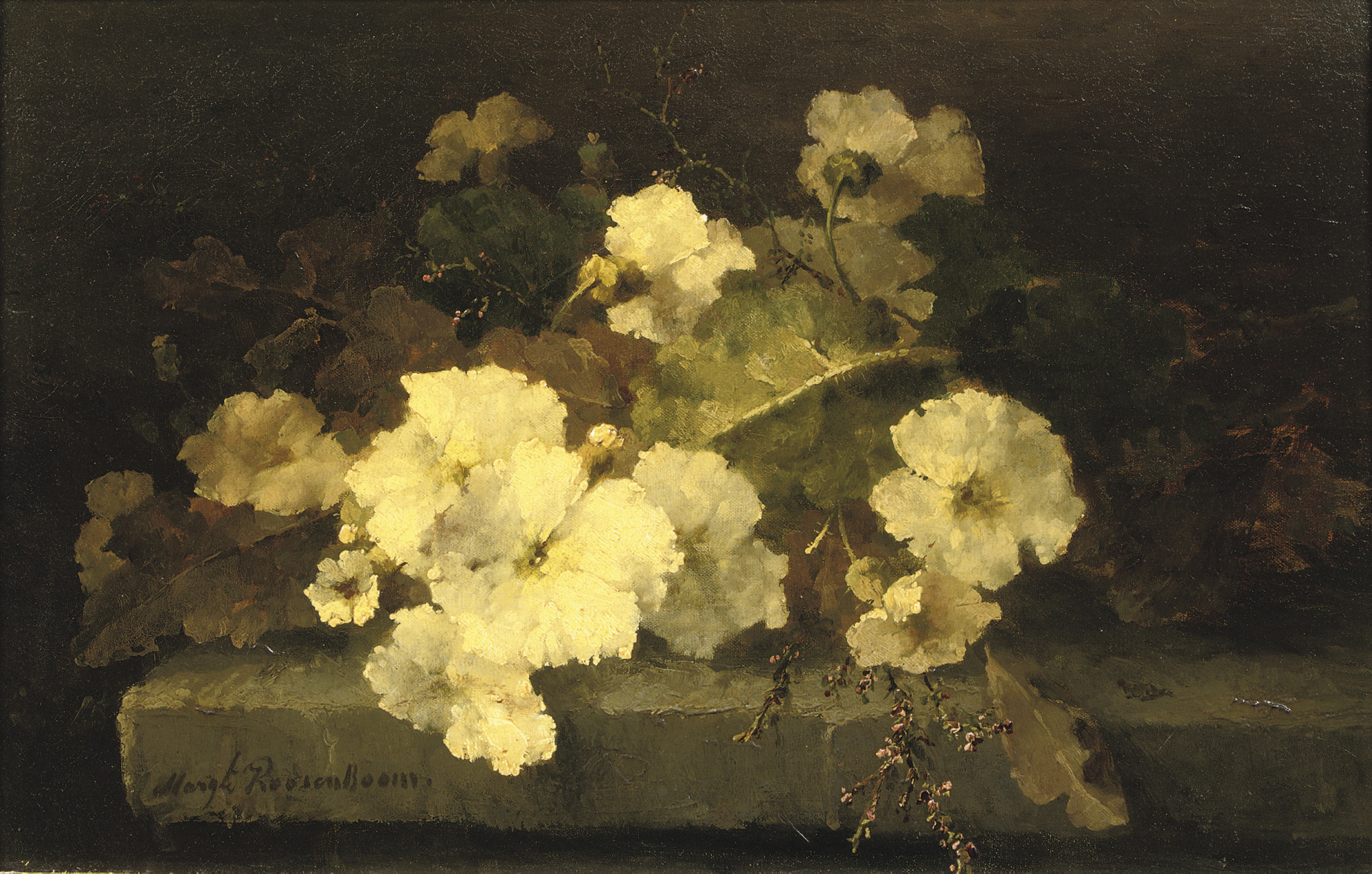 Still life with primroses on a stone ledge