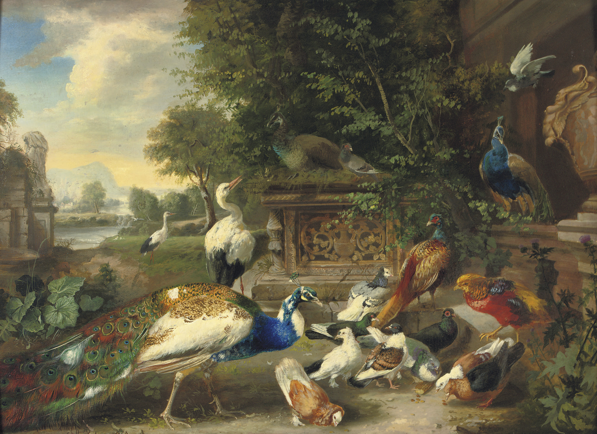 A feathered feast