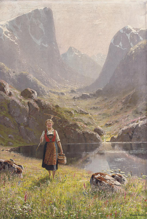 A summer morning by the fjord