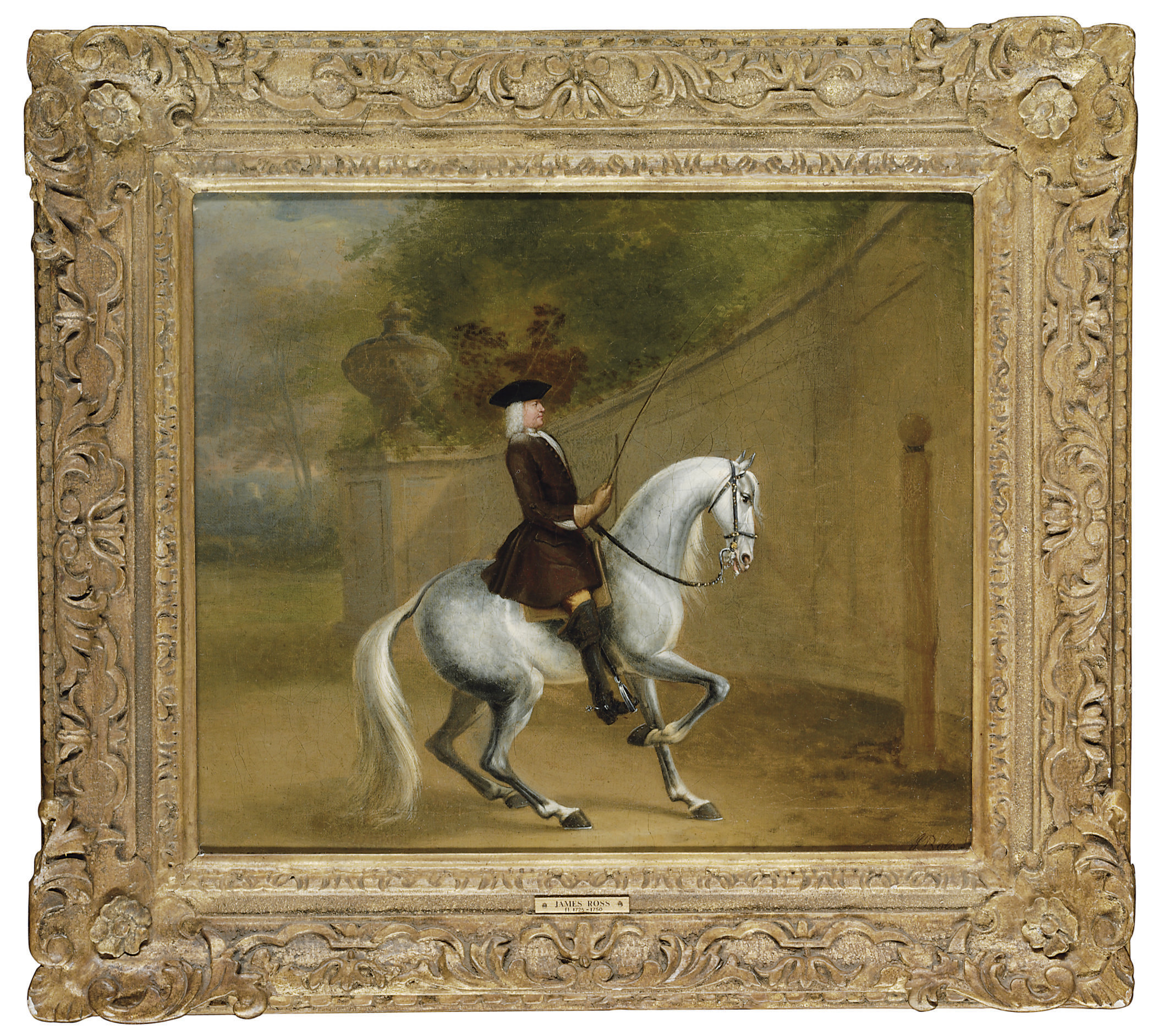 A gentleman on a grey at a riding school executing a reinback on a single rein
