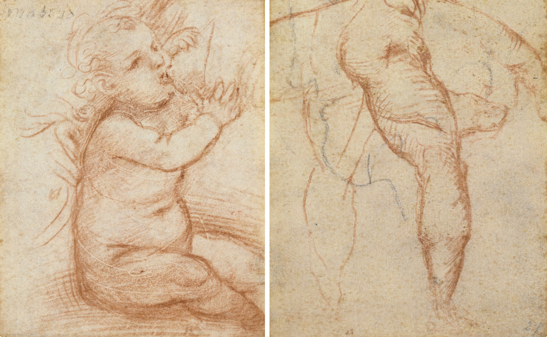 Study of the Christ Child suckling (recto); Studies of nude legs and a hand (verso)