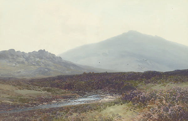A moorland landscape