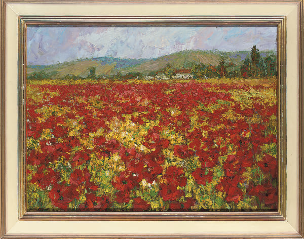 A field of poppies