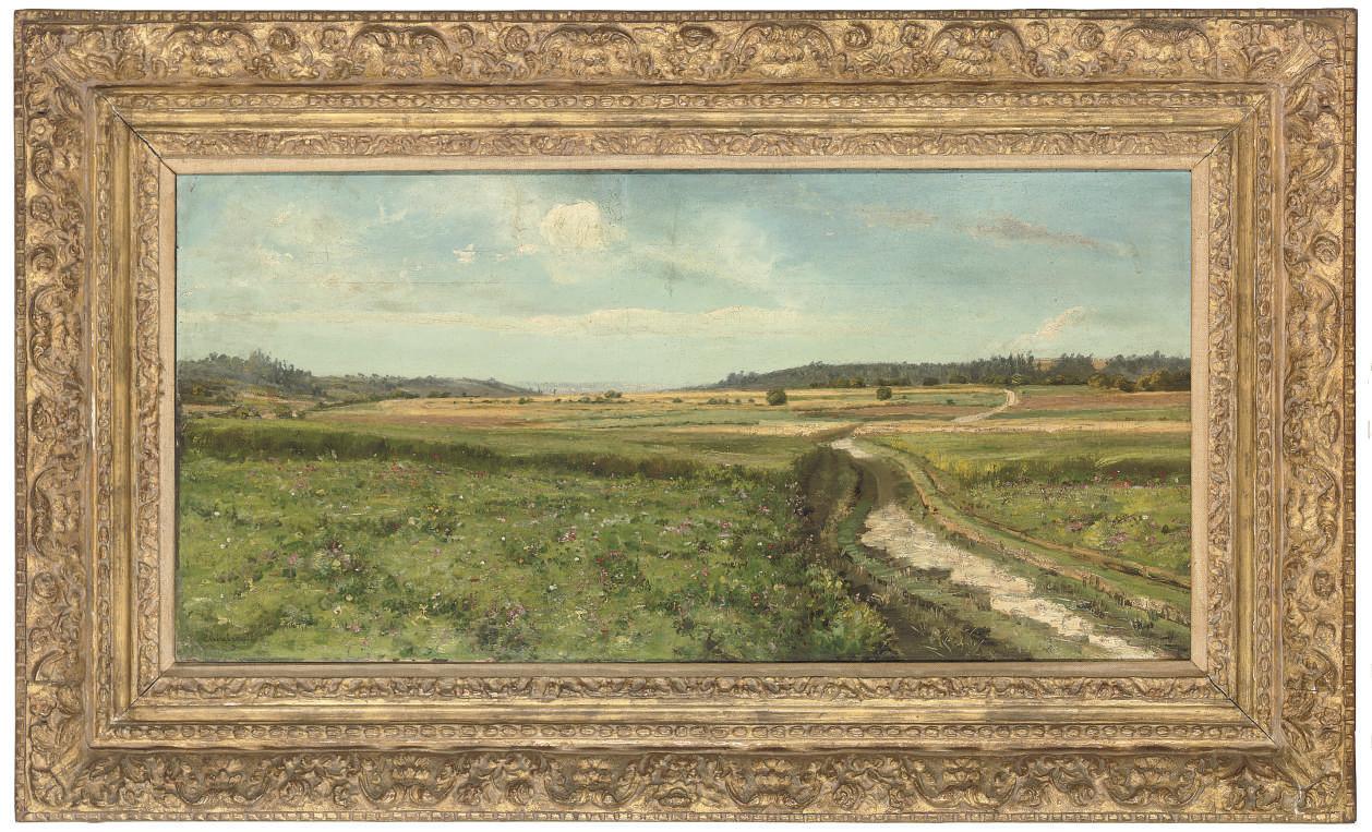 A path through the meadows