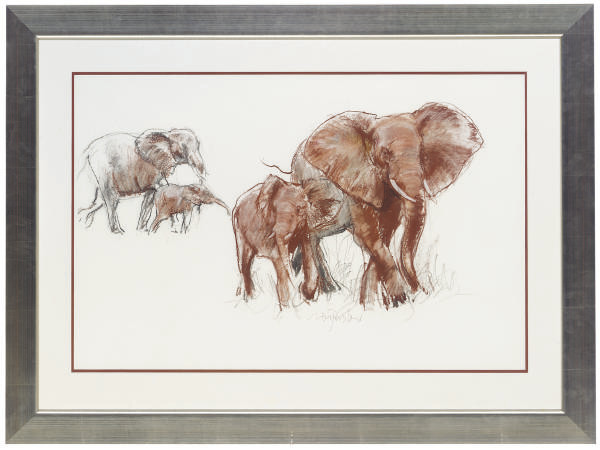 Elephants with their young